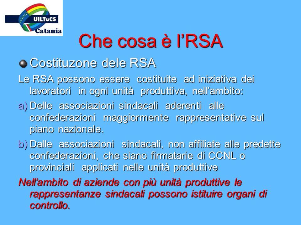 Che cosa è l'RSA Costituzone dele RSA