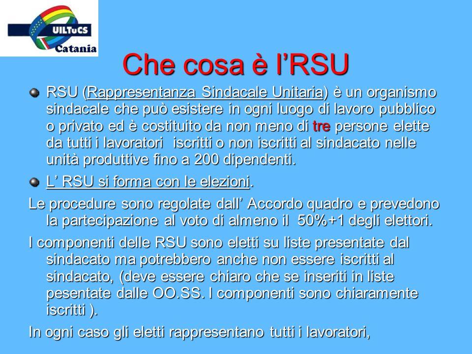 Che cosa è l'RSU