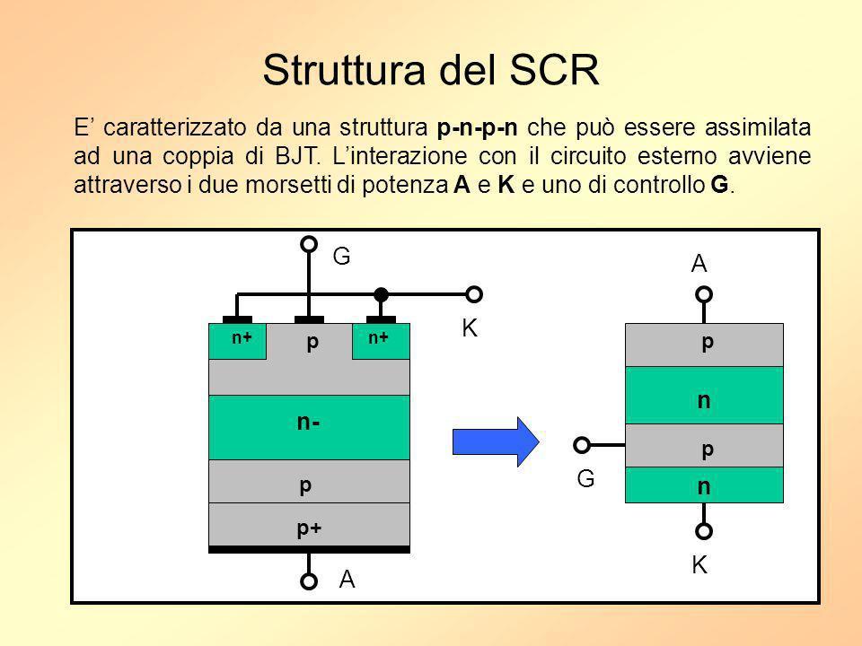 Struttura del SCR