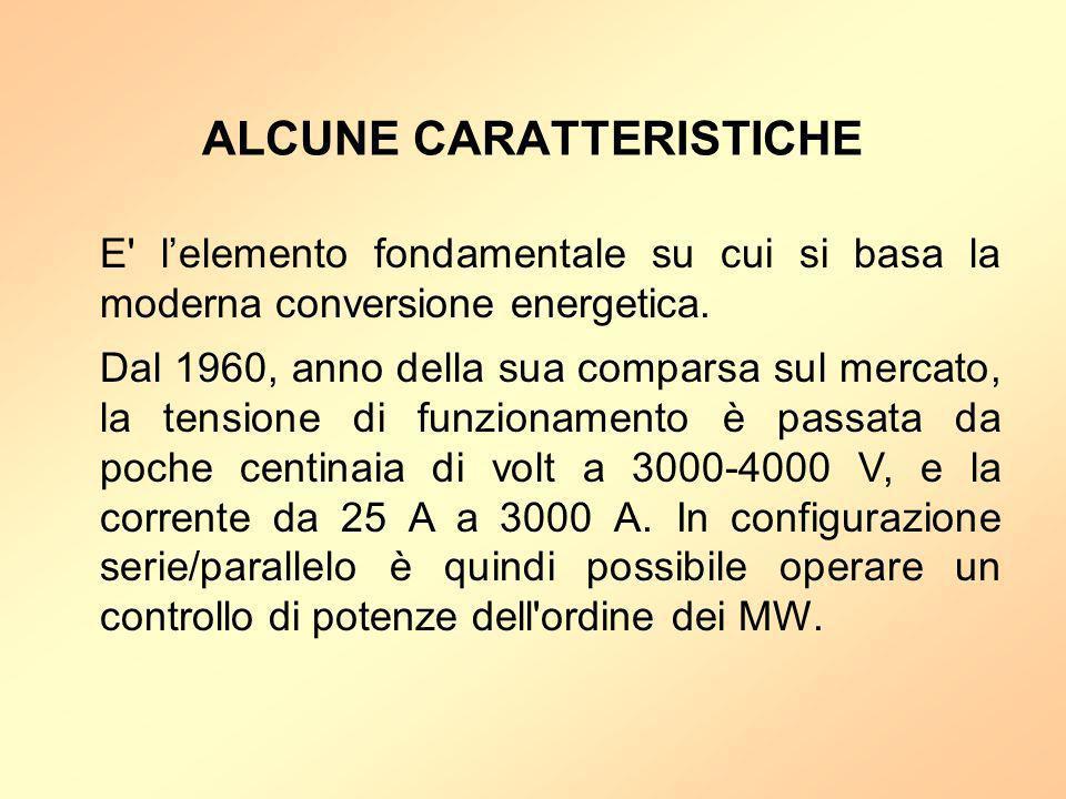 ALCUNE CARATTERISTICHE