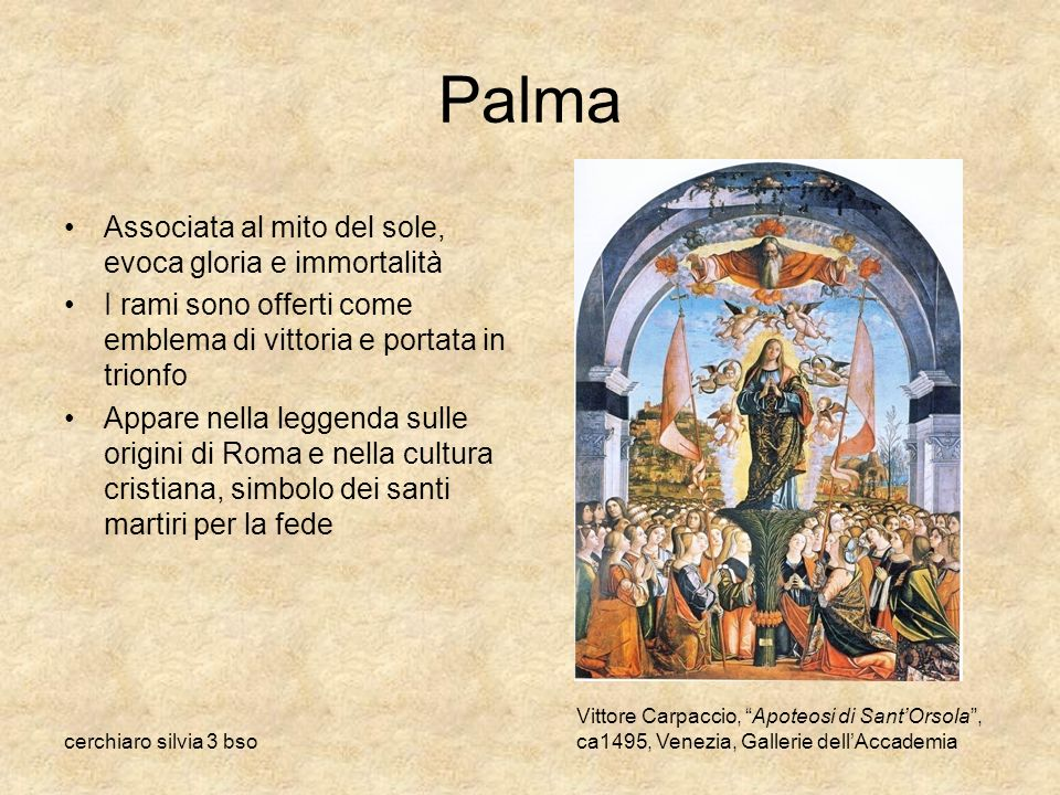 Palma Associata al mito del sole, evoca gloria e immortalità
