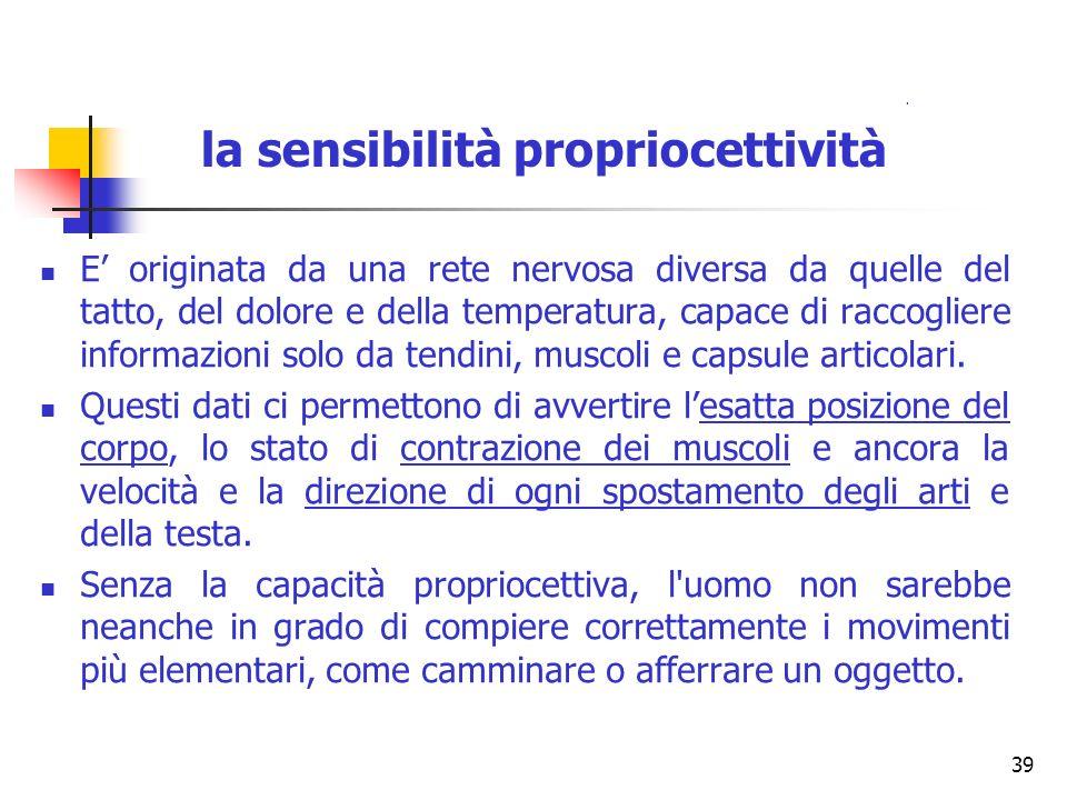 la sensibilità propriocettività