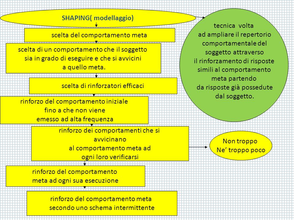 SHAPING( modellaggio)