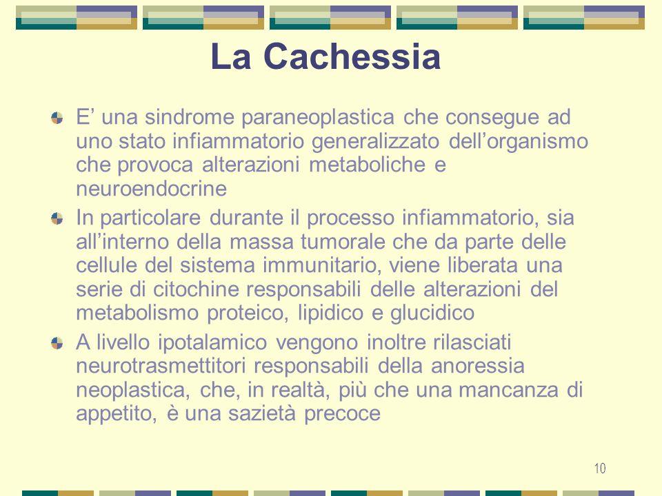 La Cachessia