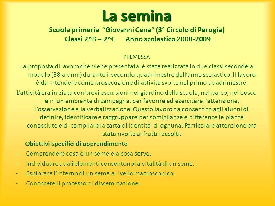 La semina Scuola primaria Giovanni Cena (3° Circolo di Perugia) Classi 2^B – 2^C Anno scolastico 2008-2009