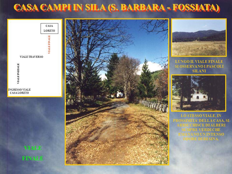 CASA CAMPI IN SILA (S. BARBARA - FOSSIATA)