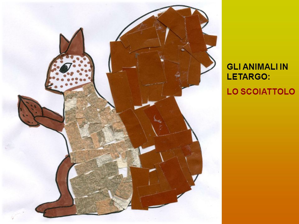 GLI ANIMALI IN LETARGO: