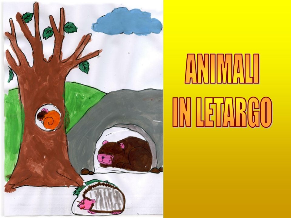 ANIMALI IN LETARGO