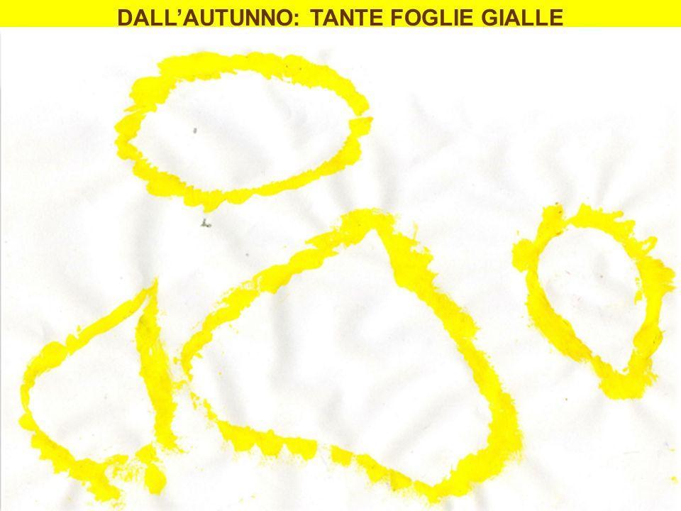 DALL'AUTUNNO: TANTE FOGLIE GIALLE