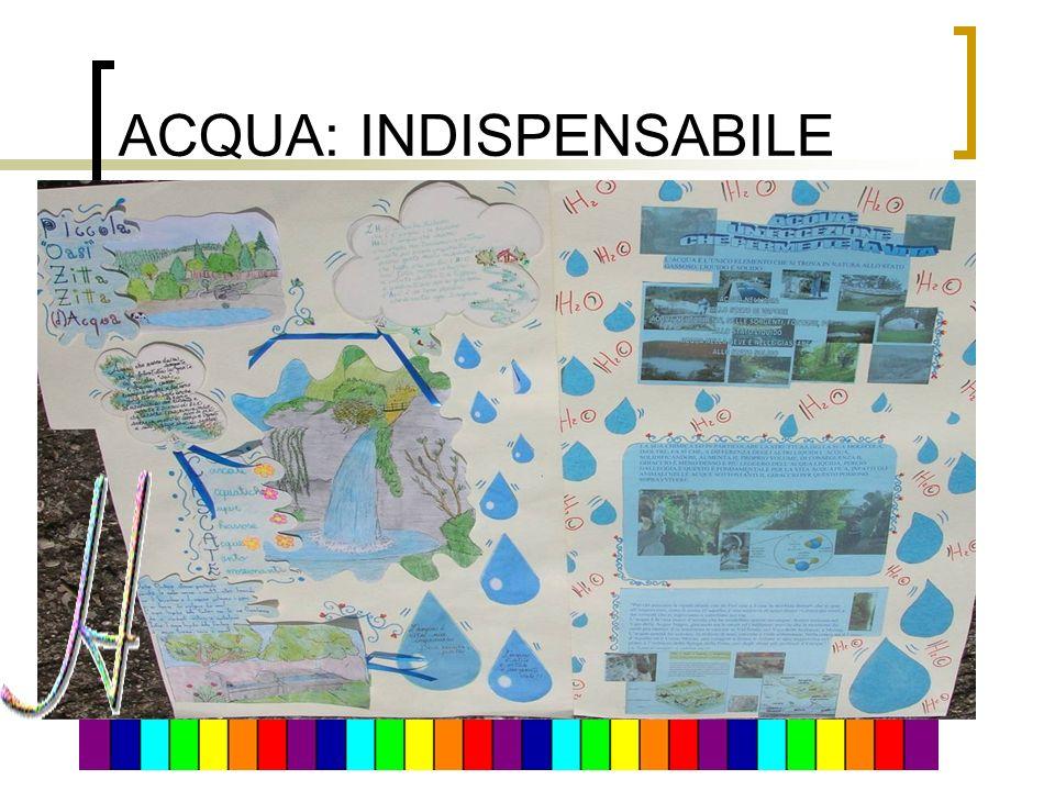 ACQUA: INDISPENSABILE