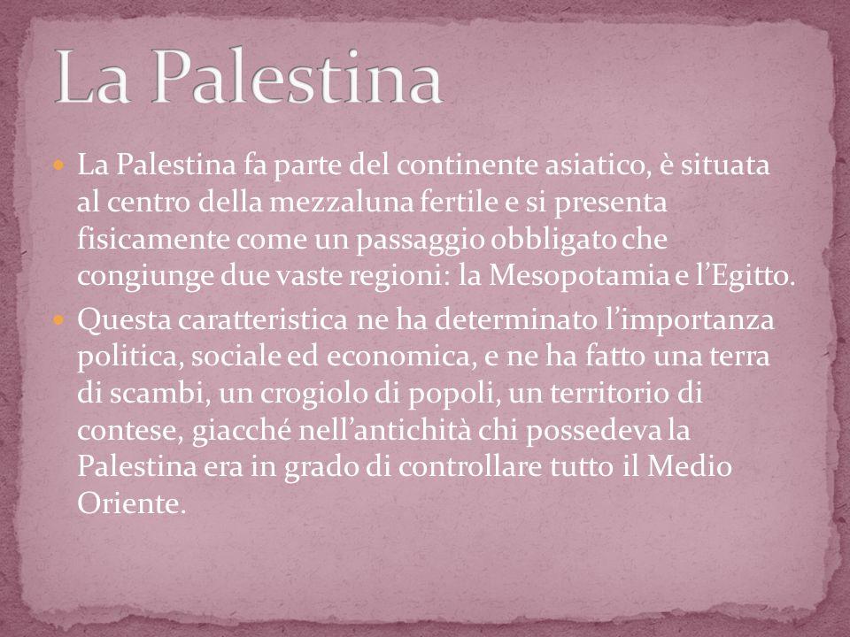 La Palestina