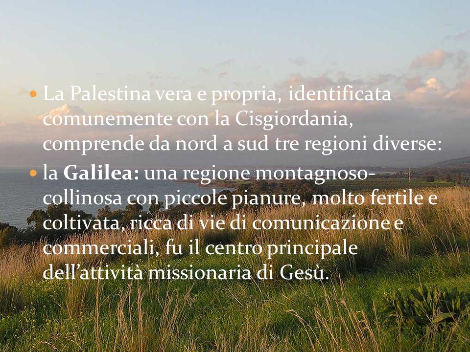 La Palestina vera e propria, identificata comunemente con la Cisgiordania, comprende da nord a sud tre regioni diverse:
