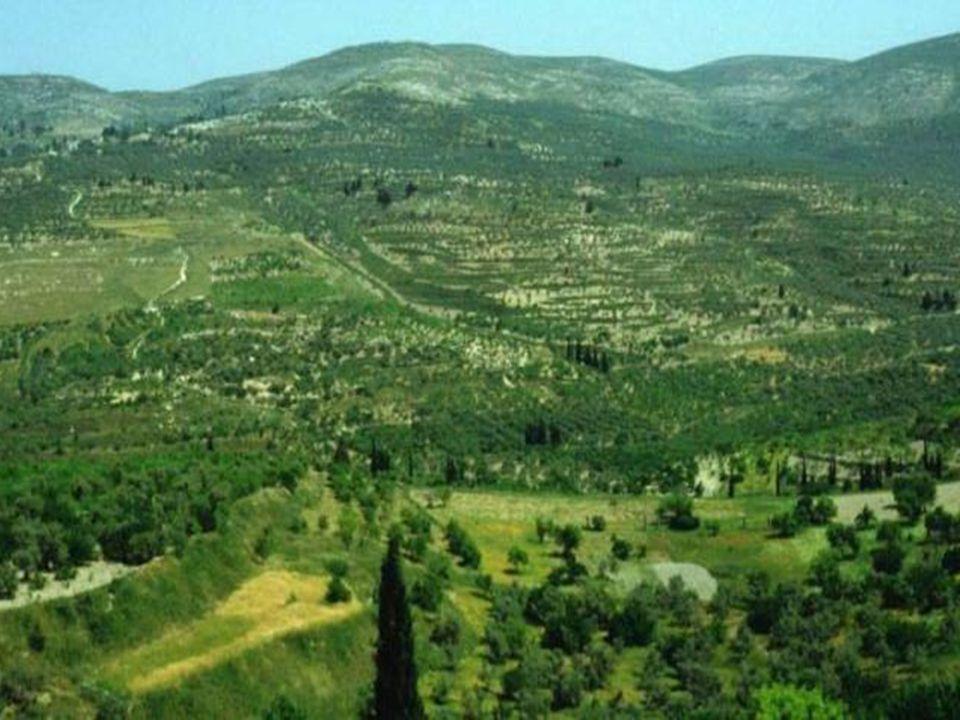 La Samaria: in posizione centrale con montagne degradanti dolcemente, ricca di pascoli, di ampie valli coltivate e con la vasta pianura di Esdrelon, fertilissima.