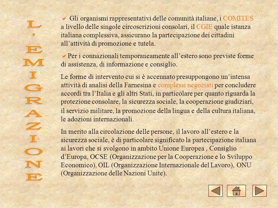Gli organismi rappresentativi delle comunità italiane, i COMITES a livello delle singole circoscrizioni consolari, il CGIE quale istanza italiana complessiva, assicurano la partecipazione dei cittadini all'attività di promozione e tutela.