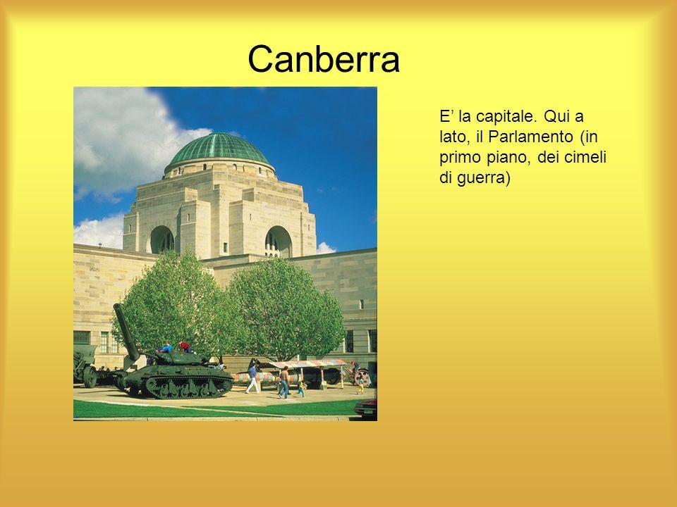 Canberra E' la capitale. Qui a lato, il Parlamento (in primo piano, dei cimeli di guerra)