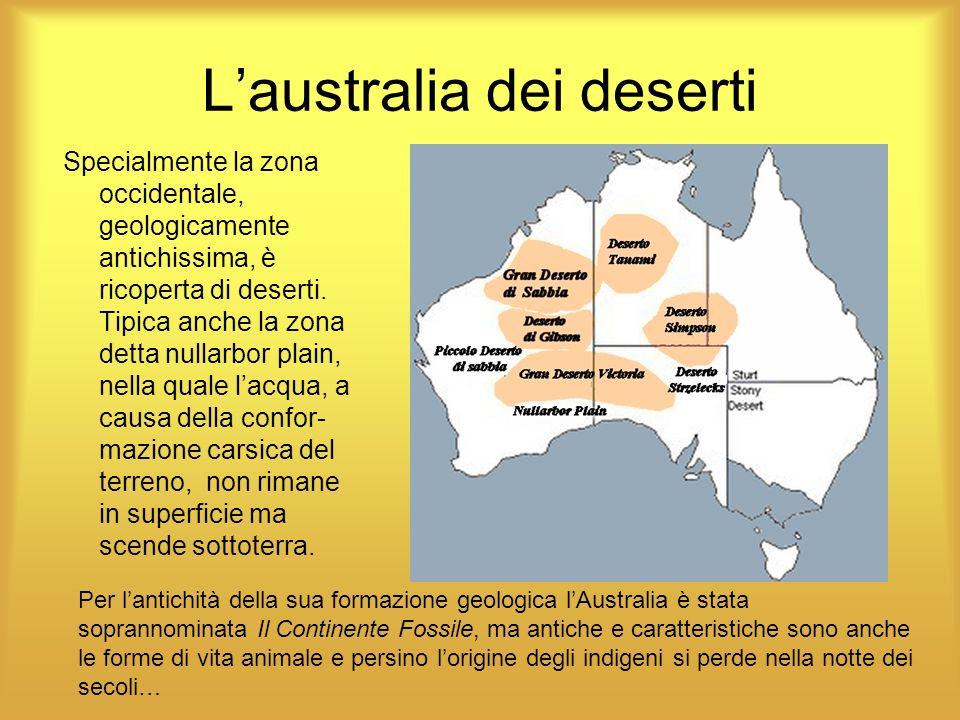 L'australia dei deserti