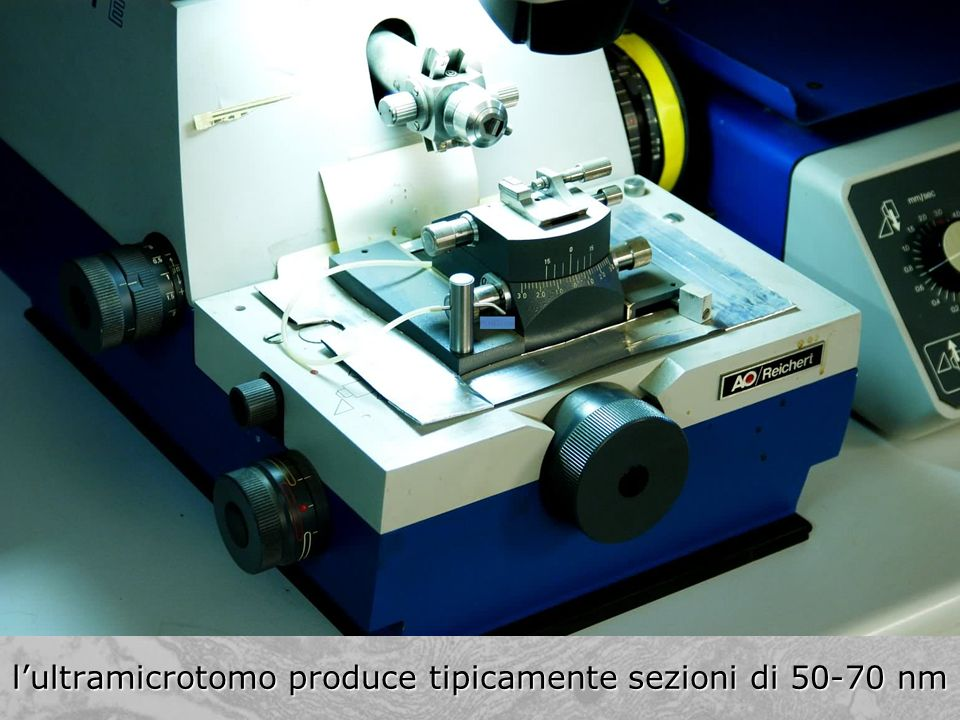 l'ultramicrotomo produce tipicamente sezioni di nm