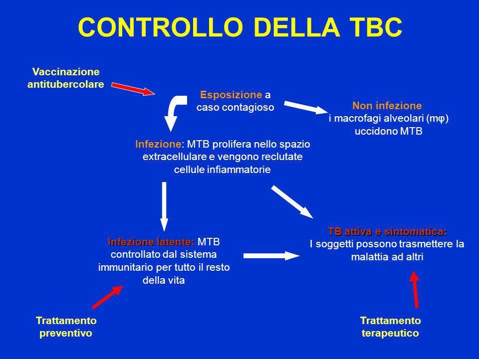 CONTROLLO DELLA TBC Vaccinazione antitubercolare