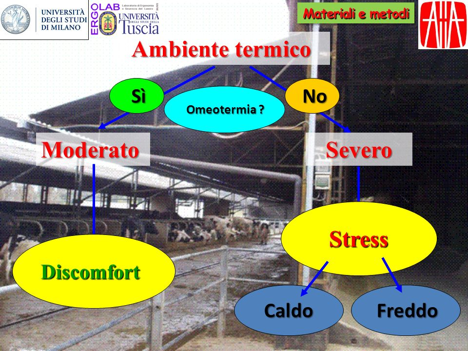 Ambiente termico Severo Stress