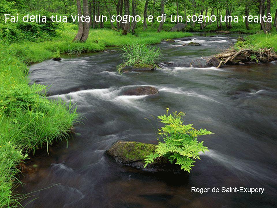 Roger de Saint-Exupery