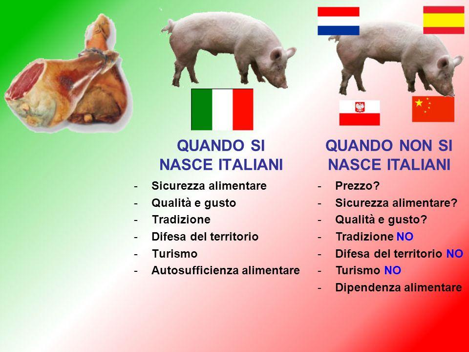 QUANDO SI NASCE ITALIANI