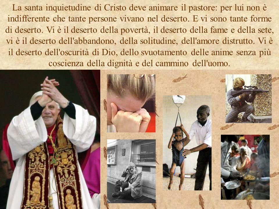 La santa inquietudine di Cristo deve animare il pastore: per lui non è indifferente che tante persone vivano nel deserto.