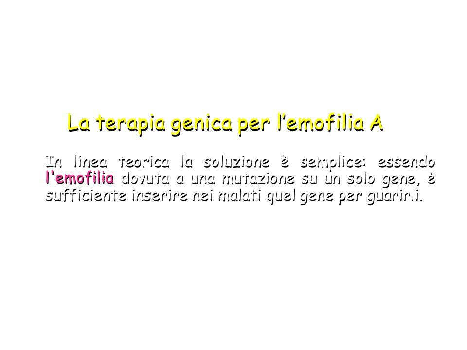 La terapia genica per l'emofilia A