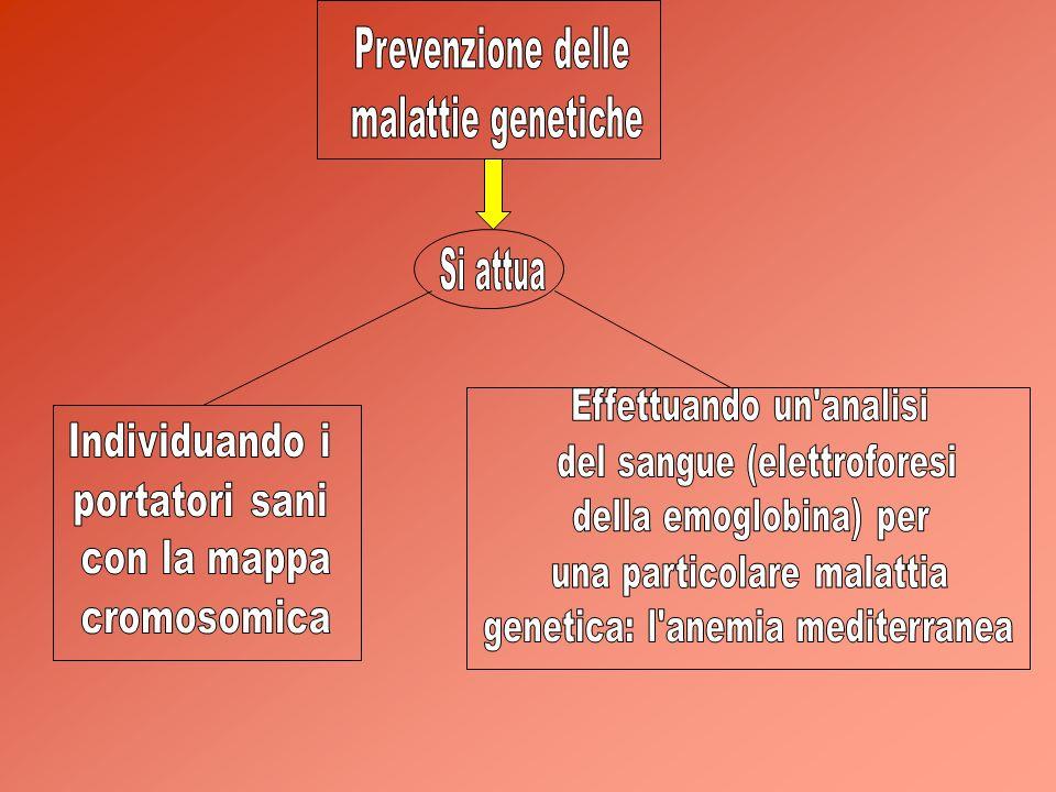 Prevenzione delle malattie genetiche