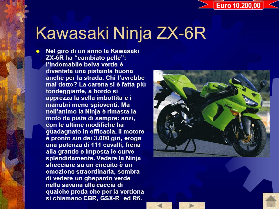 Kawasaki Ninja ZX-6R Euro 10.200,00