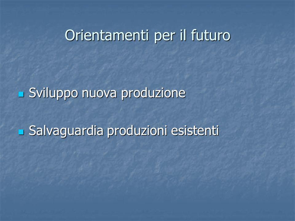 Orientamenti per il futuro