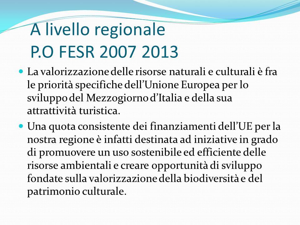A livello regionale P.O FESR 2007 2013