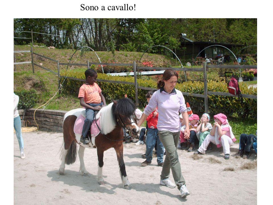 Sono a cavallo!