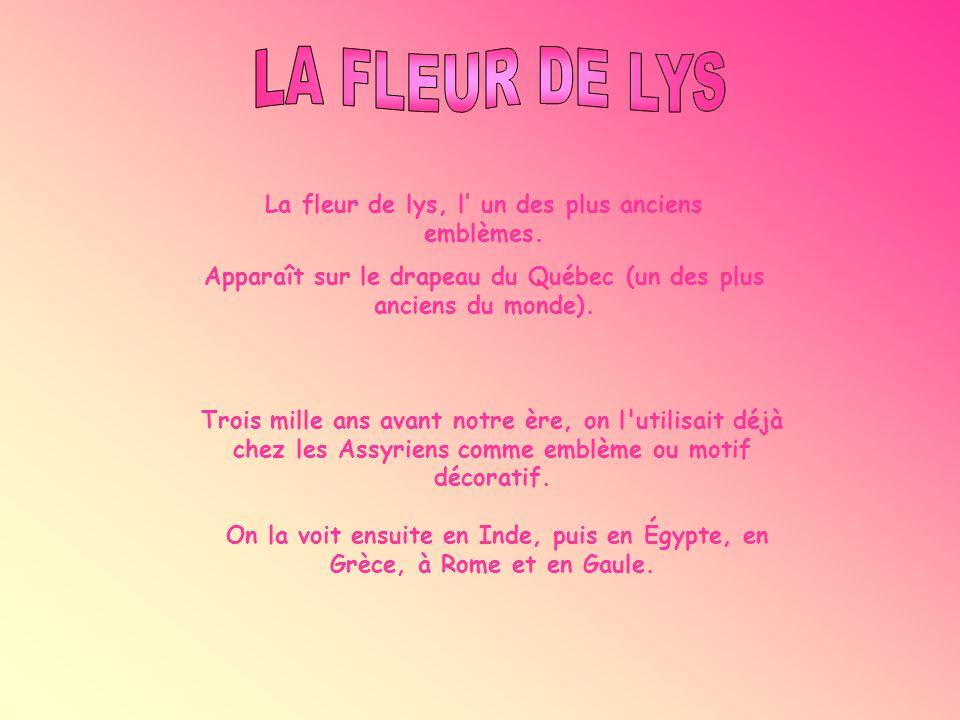 LA FLEUR DE LYS La fleur de lys, l' un des plus anciens emblèmes.