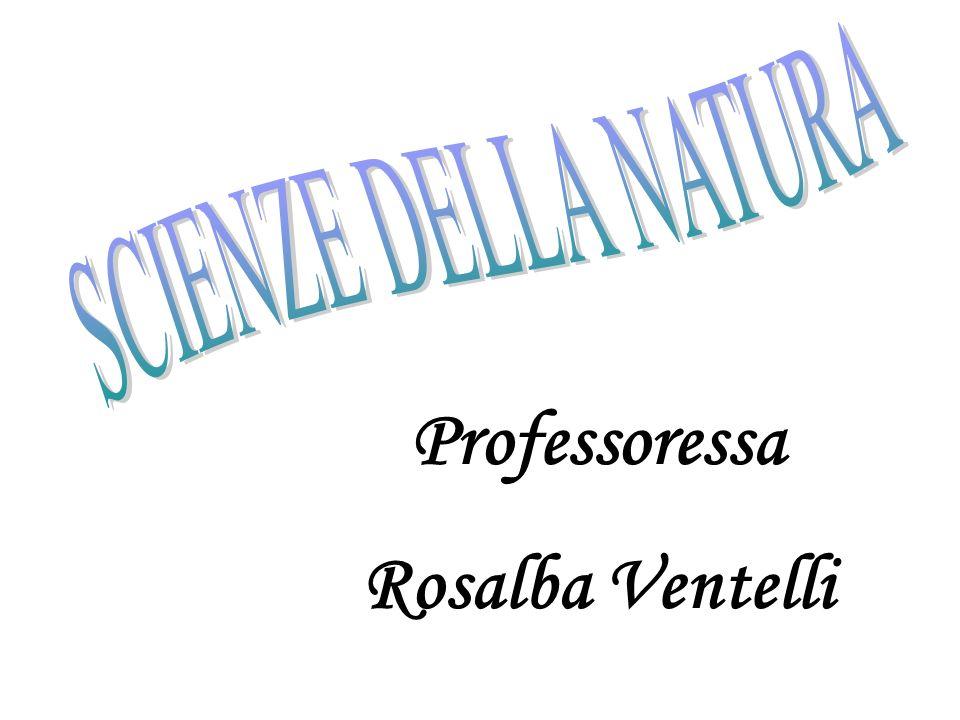 Professoressa Rosalba Ventelli