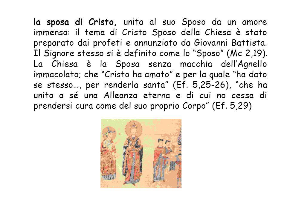 la sposa di Cristo, unita al suo Sposo da un amore immenso: il tema di Cristo Sposo della Chiesa è stato preparato dai profeti e annunziato da Giovanni Battista.