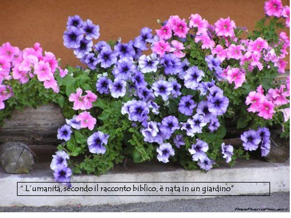 L'umanità, secondo il racconto biblico, è nata in un giardino