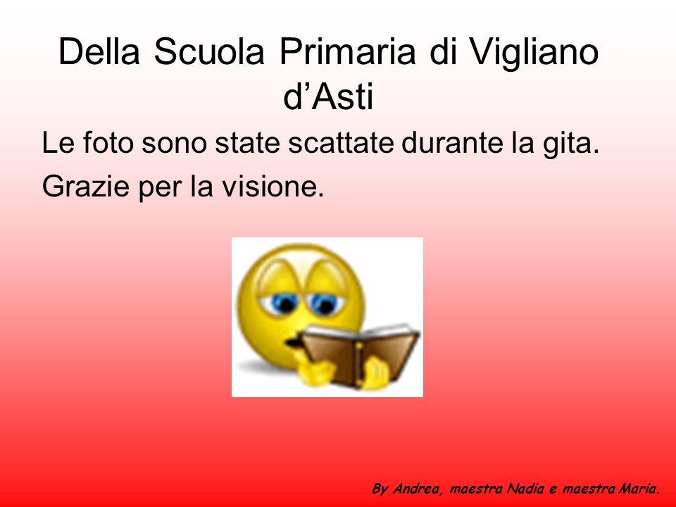Della Scuola Primaria di Vigliano d'Asti