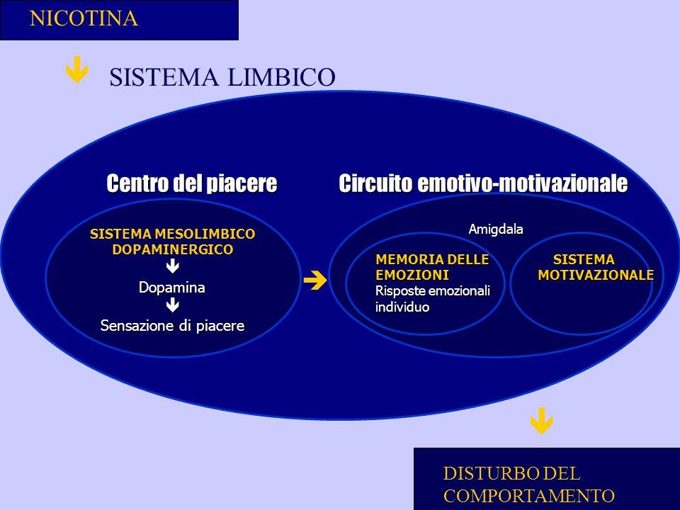   SISTEMA LIMBICO  NICOTINA
