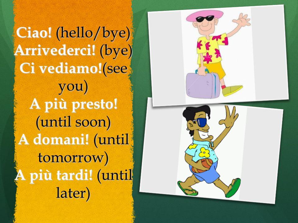 Ciao. (hello/bye) Arrivederci. (bye) Ci vediamo!(see you) A più presto.