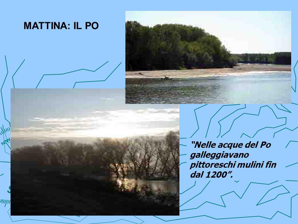 MATTINA: IL PO Nelle acque del Po galleggiavano pittoreschi mulini fin dal 1200 .