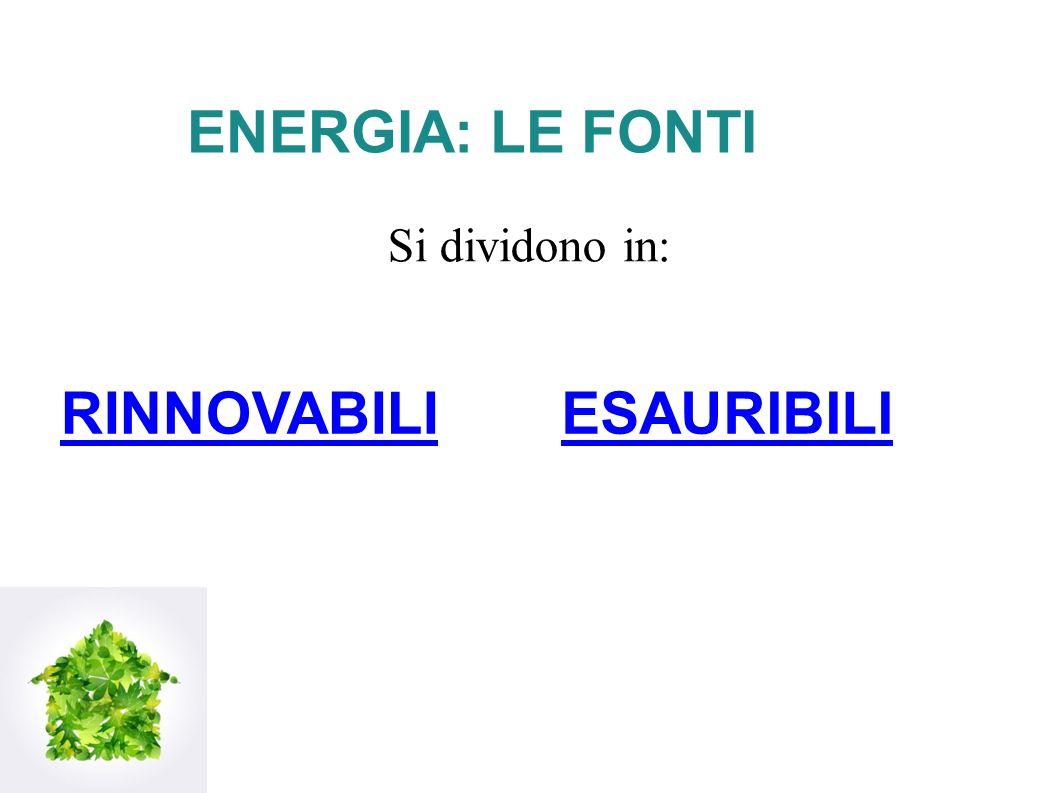 ENERGIA: LE FONTI Si dividono in: RINNOVABILI ESAURIBILI