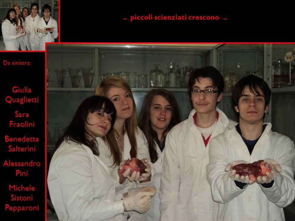 .. piccoli scienziati crescono ..