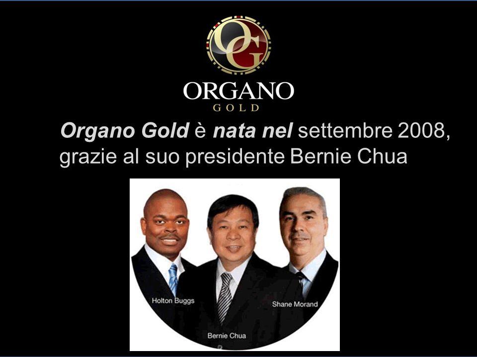 Organo Gold è nata nel settembre 2008, grazie al suo presidente Bernie Chua