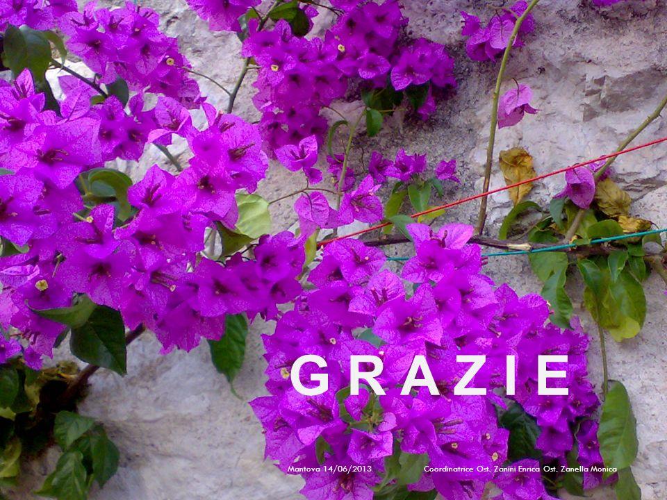 G R A Z I E Mantova 14/06/2013 Coordinatrice Ost.