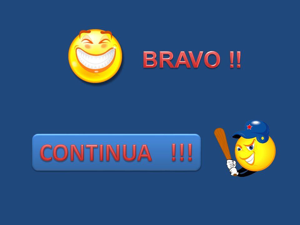 BRAVO !! CONTINUA !!!