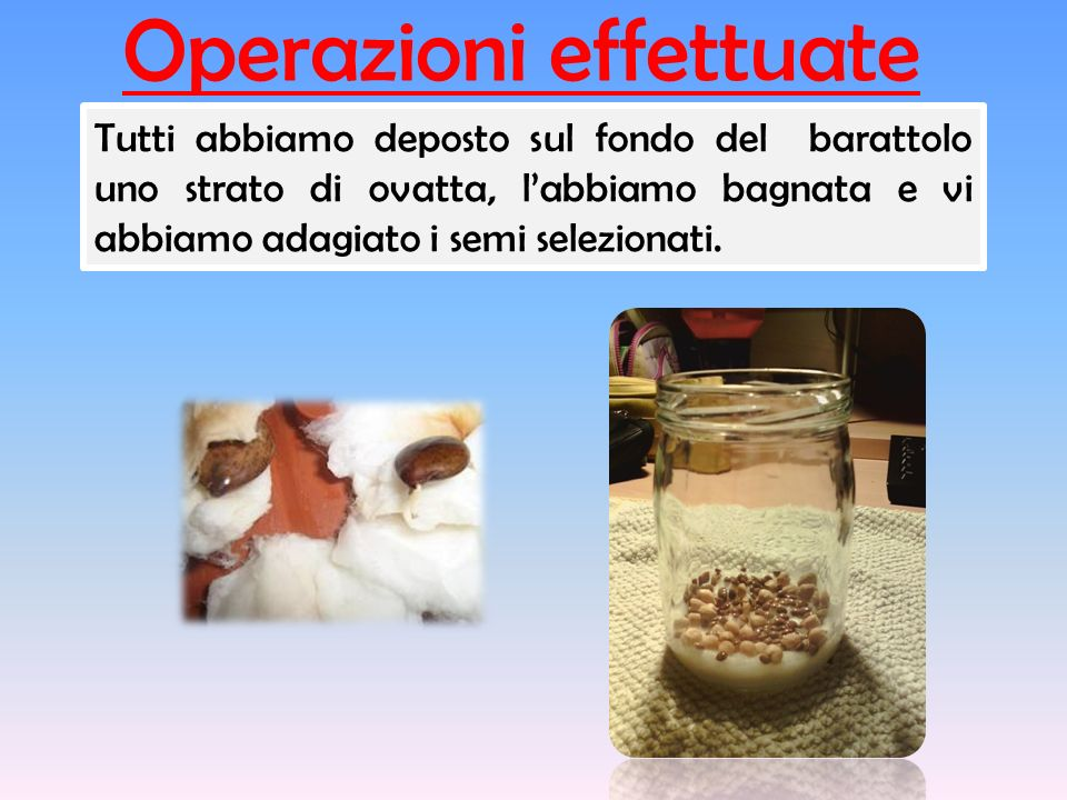 Operazioni effettuate