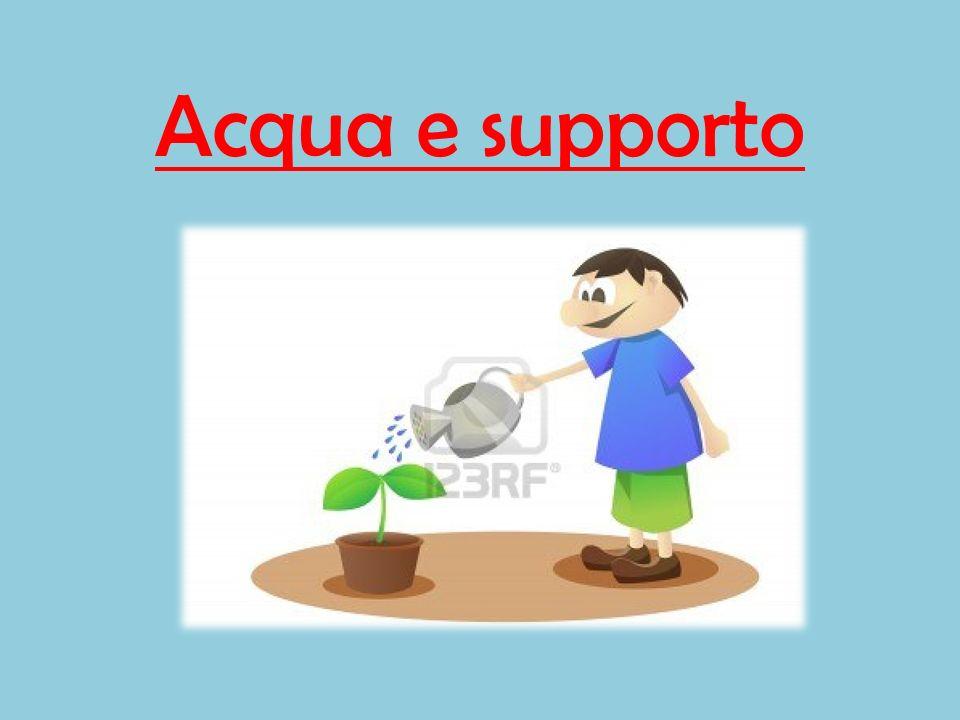 Acqua e supporto