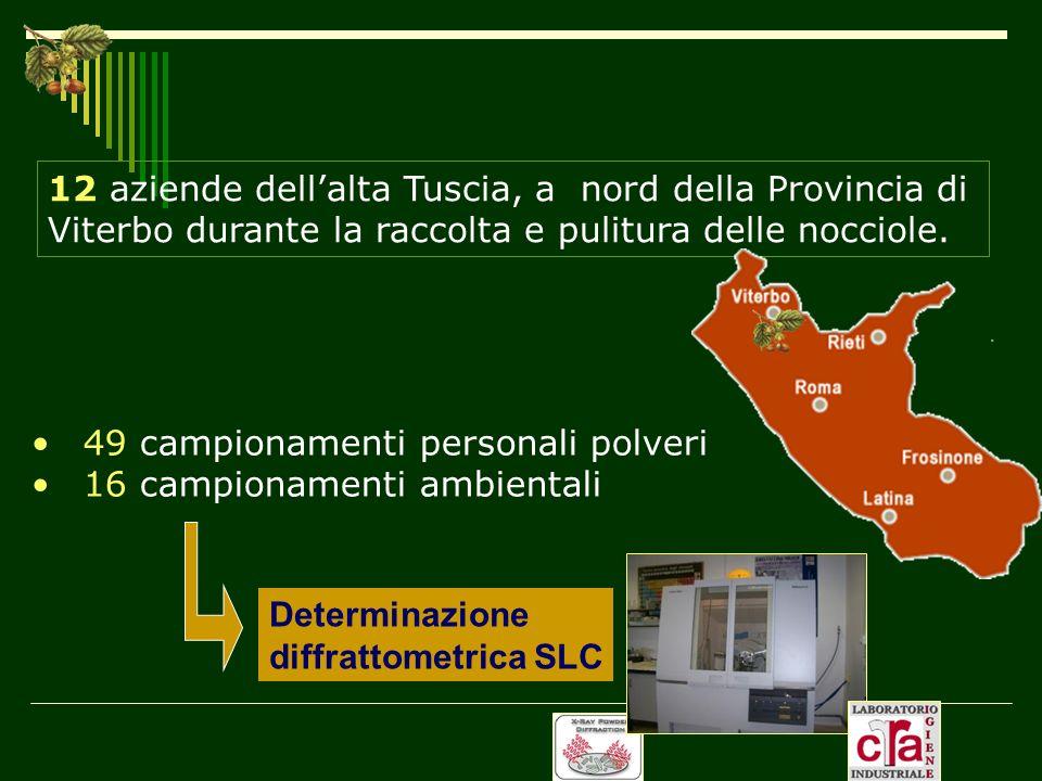 12 aziende dell'alta Tuscia, a nord della Provincia di Viterbo durante la raccolta e pulitura delle nocciole.