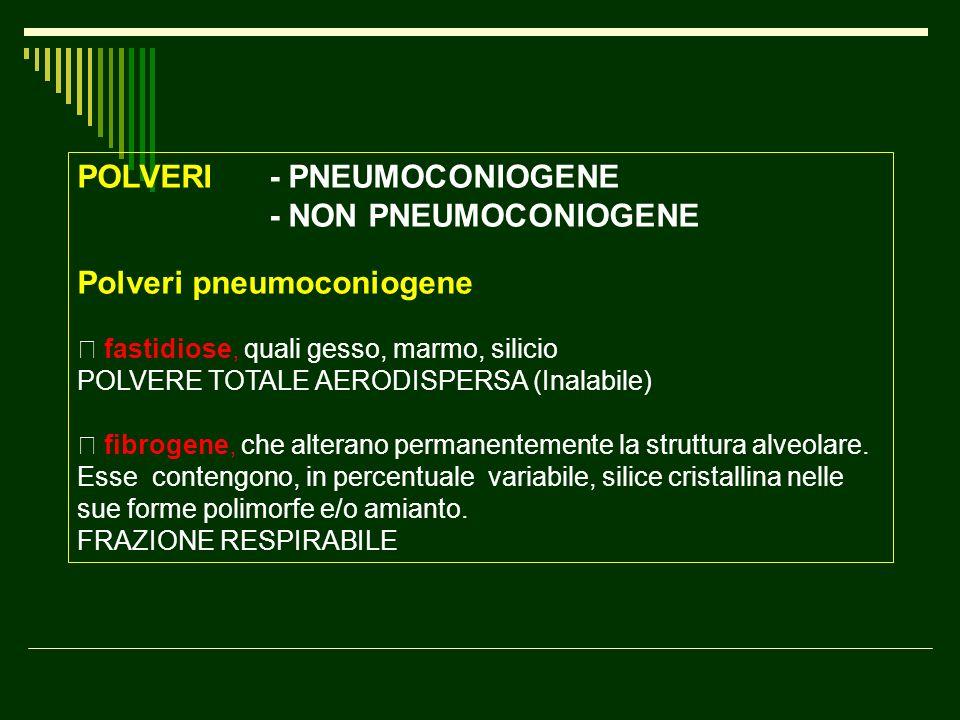 POLVERI - PNEUMOCONIOGENE - NON PNEUMOCONIOGENE