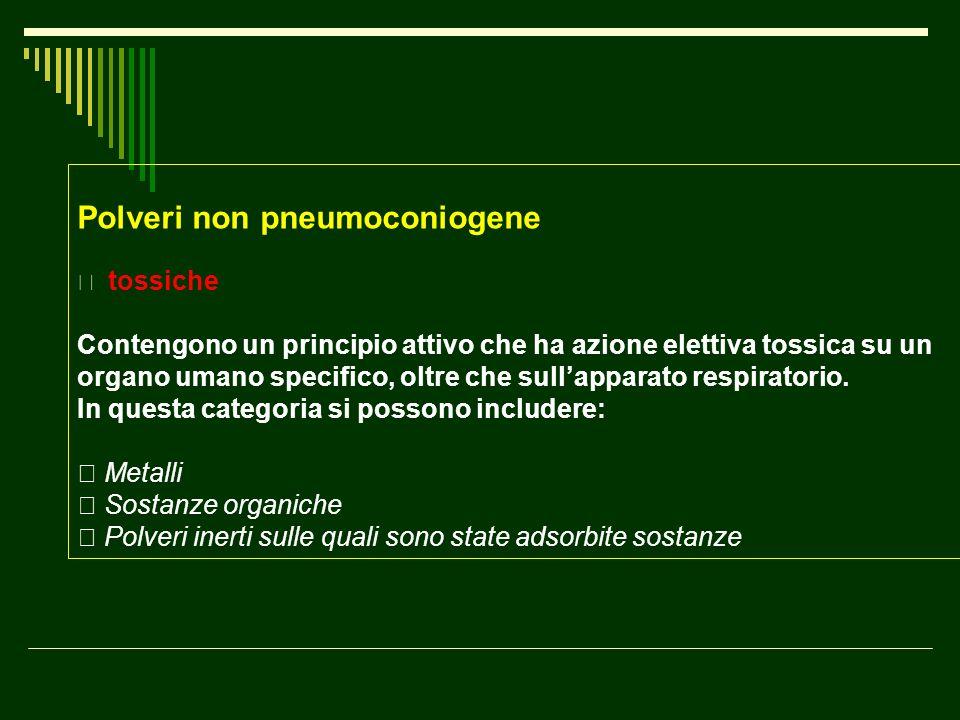 Polveri non pneumoconiogene